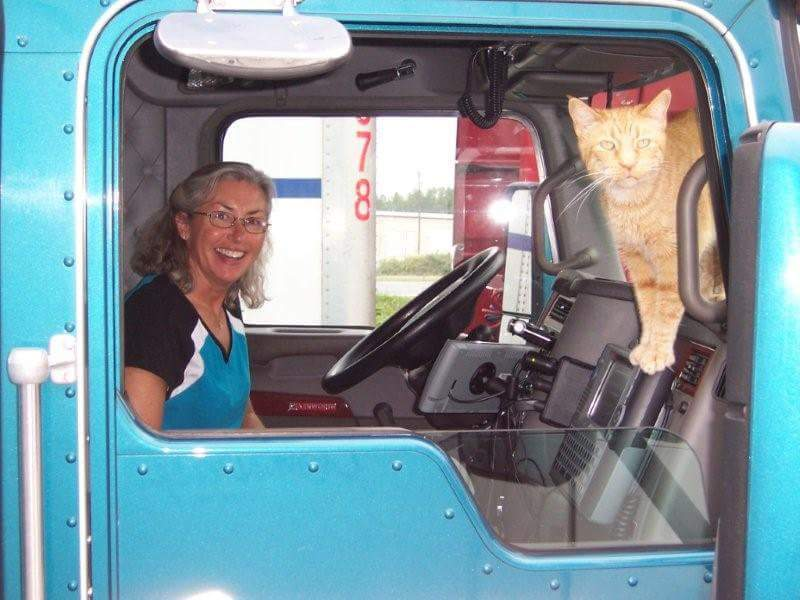 Truckers And Pets: Taking Animals On The Road